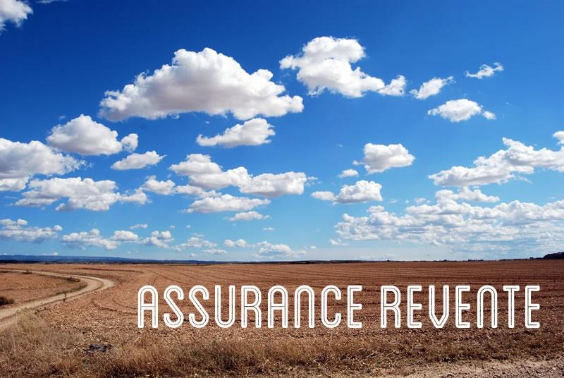 Quelle est l'utilité d'une assurance revente ?